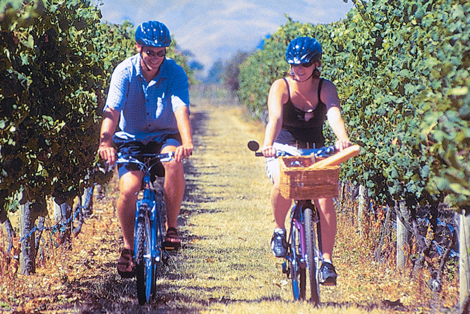 Riding in the vines with On Yer Bike